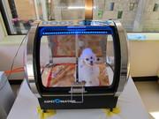 ワンちゃん専用!酸素カプセル「DOGS ONE+」導入しました!